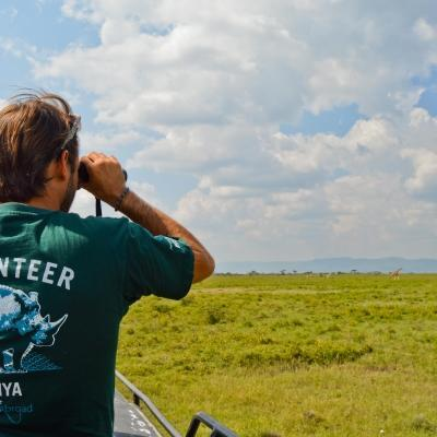 A picture of a volunteer watching a giraffe whilst on one of our wildlife conservation volunteer opportunities in Kenya.